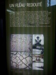 expo durance palais longchamp-20